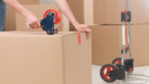 Packers and Movers Chankan Pune
