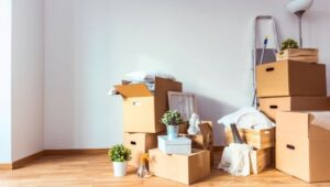 Packers and Movers Dhanori Pune