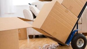 Packers and Movers Bhongir Pune