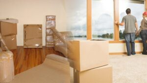 Packers and Movers Moshi Pune