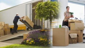 Packers and Movers Musheerabad Hyderabad
