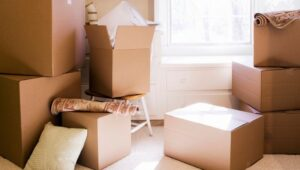 Packers and Movers Punawale Pune