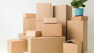 Packers and Movers Rangareddy