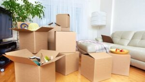 Packers and Movers Sangareddy