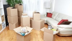 Packers and Movers Shikrapur Pune