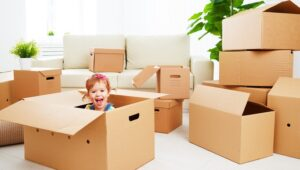 Packers and Movers Sirpur