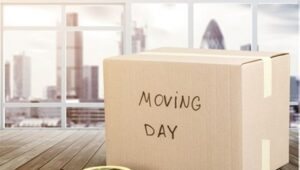 Packers and Movers Warangal