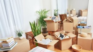 Packers and Movers Warje Pune