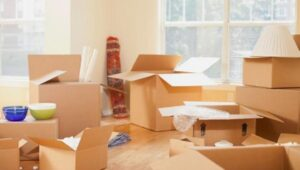 Packers and Movers Pune to Nellore