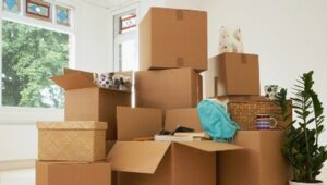 Packers and Movers from Pune To Delhi