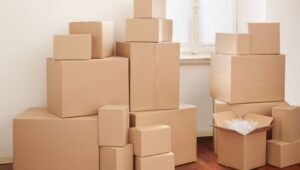 Packers and Movers from Pune to Lucknow