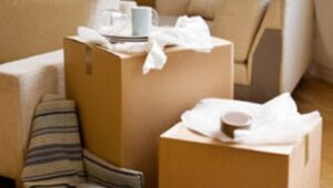 Packers and Movers Pune to Noida