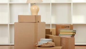 Packers and Movers from Pune to Jodhpur
