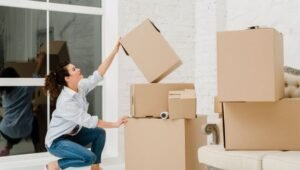 Packers and Movers from Pune to Udaipur