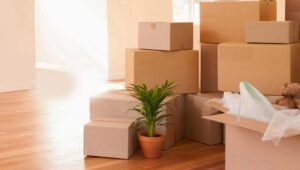 Packers and Movers from Pune to Vellore